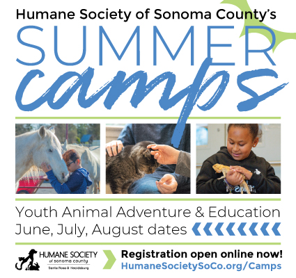 Humane Society of Sonoma County Summer Camp