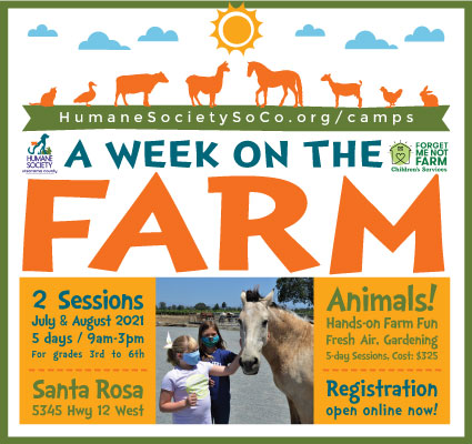 Sonoma County Humane Society Camps
