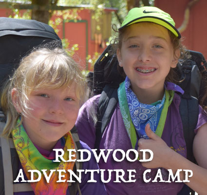 Redwood Adventure Camp